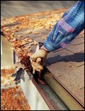 gutter cleaning and leaf guards